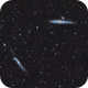 NGC 4631 and 4656 in CVn,                                GJL