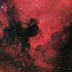 North America Nebula - NGC 7000,                                Forest Chaput de...