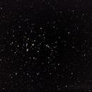 Beehive cluster,                                Dan Kordella