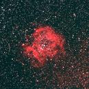 Rosette Nebula,                                SBacon