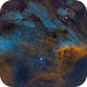 IC 5070 - Pelican Nebula,                                Kurt Zeppetello