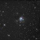 NGC 7129,                                PeterN