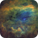 Sh2-119 Clamshell Nebula Hubble Palette,                                Alberto Vezzani