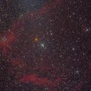 SH2-129, Flying Bat Nebula,                                Ron