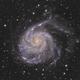 M101 Crop,                                Steve MacDonald
