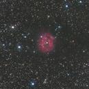 IC5146 LRGB,                                Matthieu BUI