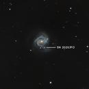M61 & Supernova - SN 2020jfo,                                Shawn Harvey