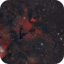 Barnard 39 and NGC 2259,                                Riedl Rudolf