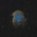 NGC 2174 - Monkey Head Nebula,                                Victor Van Puyenbroeck