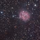 Cocoon Nebula - IC 5146,                                Trevor Gunderson