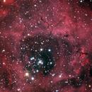 Rosette Nebula Core,                                mlewis