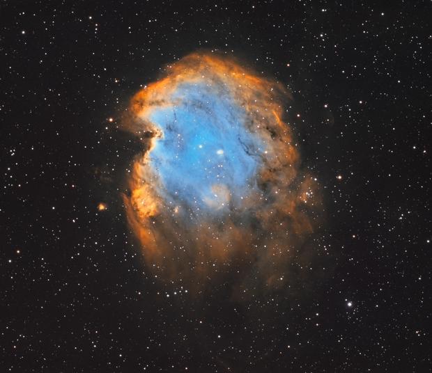 The Monkey Head Nebula (NGC 2175),                                Luca Marinelli