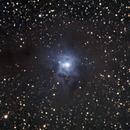 Iris Nebula,                                Jim Davis