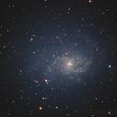 M33,                                Robert de Groot