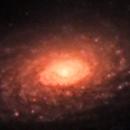 Messier 63 - Sunflower,                                Rich Sky