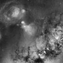 Ophiuchus to Scorpius,                                John Gleason