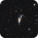 NGC 5394/5 (Heron Galaxy),                                DetlefHartmann