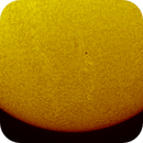 Sun in Ha, one shot for disk and prominences ,                                apricot