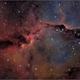 IC1396 The Elephant's Trunk Nebula (HOO),                                Randal Healey