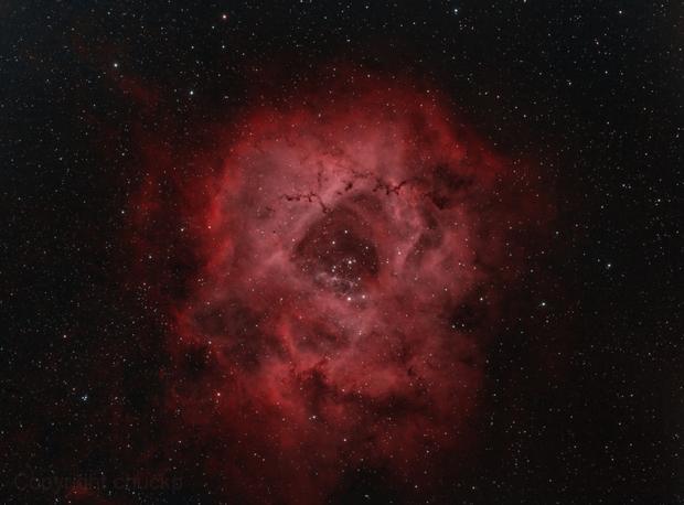 Rosette Nebula,                                chuckp