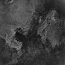 Pelican and North American Nebula in Ha,                                Dave (Photon)