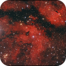 IC 1318,                                Gottfried Meissner