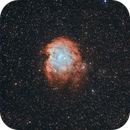 NGC 2174, The Monkey Head Nebula,                                Loran Hughes
