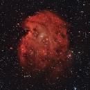 NGC 2174 (Monkeyhead Nebula) and the Open Cluster NGC 2175,                                InfinitAstro