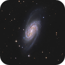 NGC 2903 with ASI 294 MC Pro,                                Jeffbax Velocicaptor