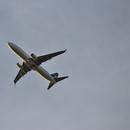 Searching plane plate number- Boeing 737-8CT-Westjet, 2015-Canon 250mm-no crop,                                Adel Kildeev