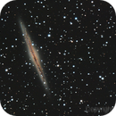 NGC891,                                ROCH LEVESQUE