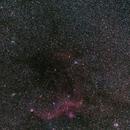 IC 2177 & NGC 2359,                                Mark Sansom