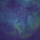 IC 1396 Elephant's Trunk,                                Barczynski