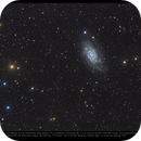 NGC 2403 (also known as Caldwell 7),                                Andre van Zegveld