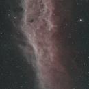 California Nebula,                                Phillip Klein