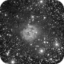 Cocoon nebula - Nébuleuse du cocon - IC 5146,                                Didier Walliang