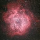 The Rosette (Skull) Nebula,                                blairconner