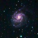 M101 - Pinwheel Galaxy,                                Mike Ingalls