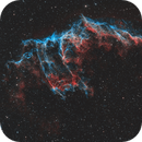 NGC6992 Eastern Veil,                                Nik Coli