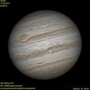 Júpiter,                                Oliveira