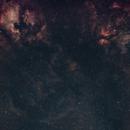 Cygnus area,                                droe