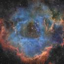 Rosette Nebula in Ha,                                Wes Chilton
