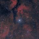 Gamma Cyg Nebula LRGB,                                J. Norris