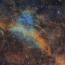 IC1318A,                                Toshiya Arai
