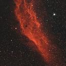 NGC1499 California Nebula,                                Jeff Dorman
