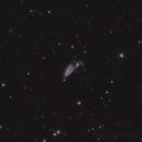 NGC5395 & NGC5394,                                Andrei Ioda