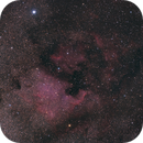 NGC 7000 and friends,                                Mark Williams