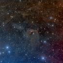 NGC 1555 Hind's Variable Nebula,                                Tolga