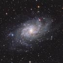 M33 NBRGBCombination,                                Eric Cauble