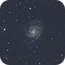 M101 da Roma,                                Marco da Roma
